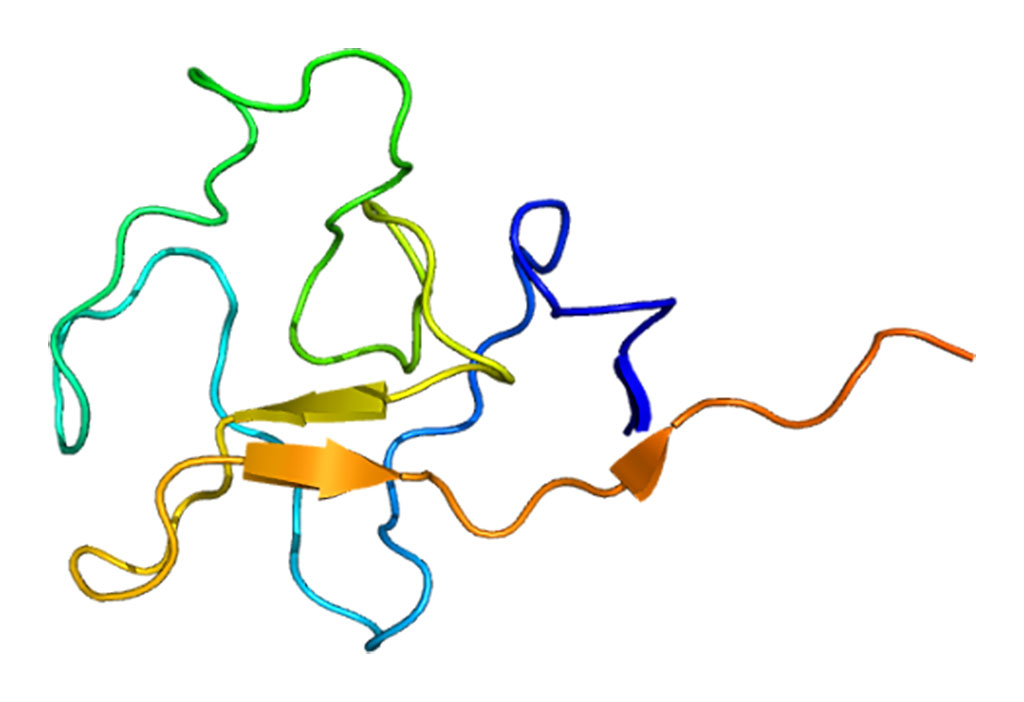 Image: Structure of the apolipoprotein(a) protein (Photo courtesy of Wikimedia Commons)