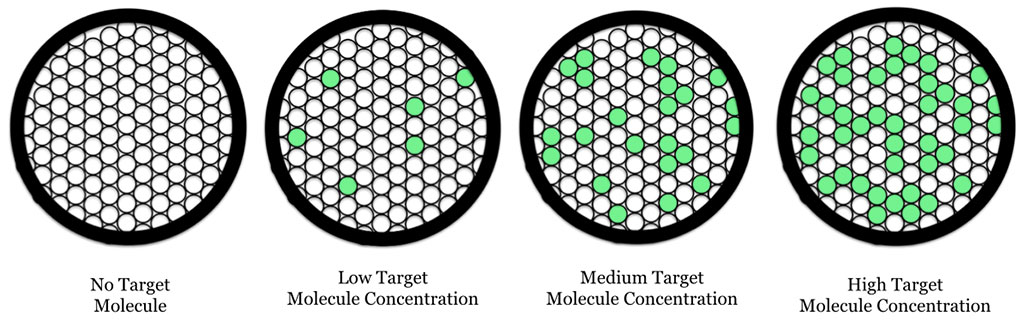Image: Digital droplet PCR (ddPCR): schematic showing oil droplets containing fluorescent PCR target molecules (Photo courtesy of Wikimedia Commons)