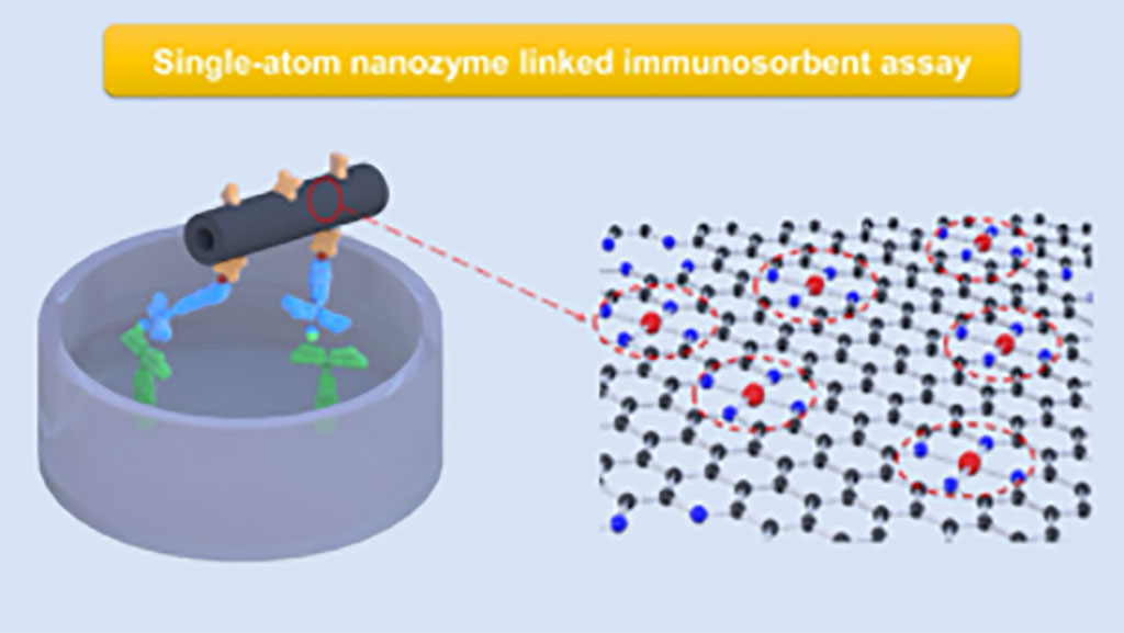 Image: A molecular-scale illustration of single-atom nanoyzmes and their application as a signal labels in an immunoassay. On the left, illustration of a protein biomarker being captured and detected in an immunoassay (Photo courtesy of Washington State University)