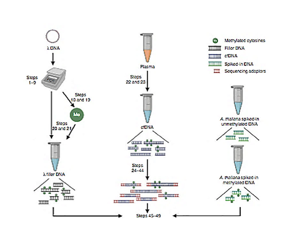 Image: Schematic diagram of cell-free methylated DNA immunoprecipitation and high-throughput sequencing (cfMeDIP-seq) (Photo courtesy of Princess Margaret Cancer Centre).