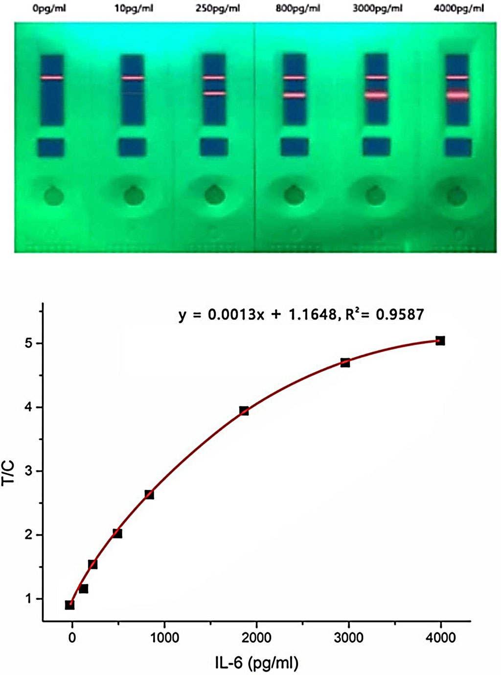 Image: The quantum dot (QD)‐based fluorescence lateral flow immunoassay (LFIA) strip can rapidly and accurately detect IL‐6 levels at different concentrations (Photo courtesy of University of South China)