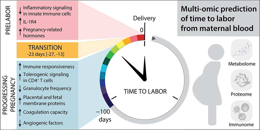 Image: Multiomic prediction of time to labor from biomarkers in maternal blood (Photo courtesy of STELZER ET AL.)