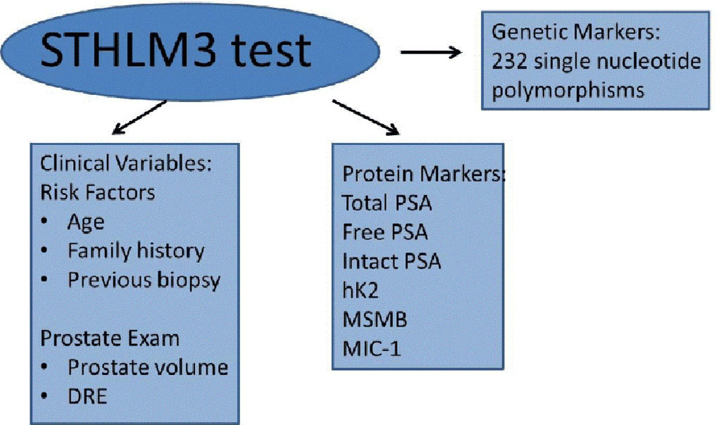 Image: Novel Blood-Based Stockholm3 (STHLM3) Test Bolsters MRI-Based Prostate Cancer Screening (Photo courtesy of Julie-Ann O`Reilly, PhD)