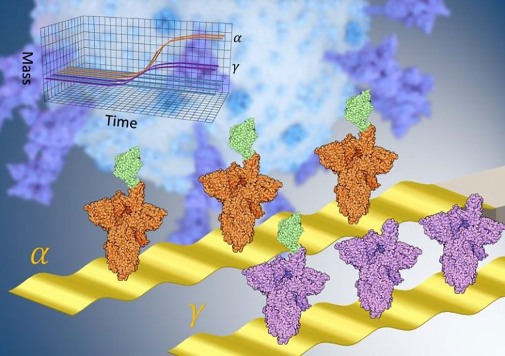 Image: New Nanomechanical Technique for Fast, One-Step, Immune-Affinity Tests Rapidly Quantifies Transmissibility of COVID-19 Variants (Photo courtesy of Trinity College Dublin)