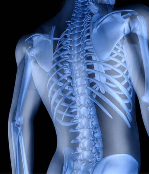 Image: The digital X-ray industry is expected to continue its impact on the global radiography market (Photo courtesy of iStock).