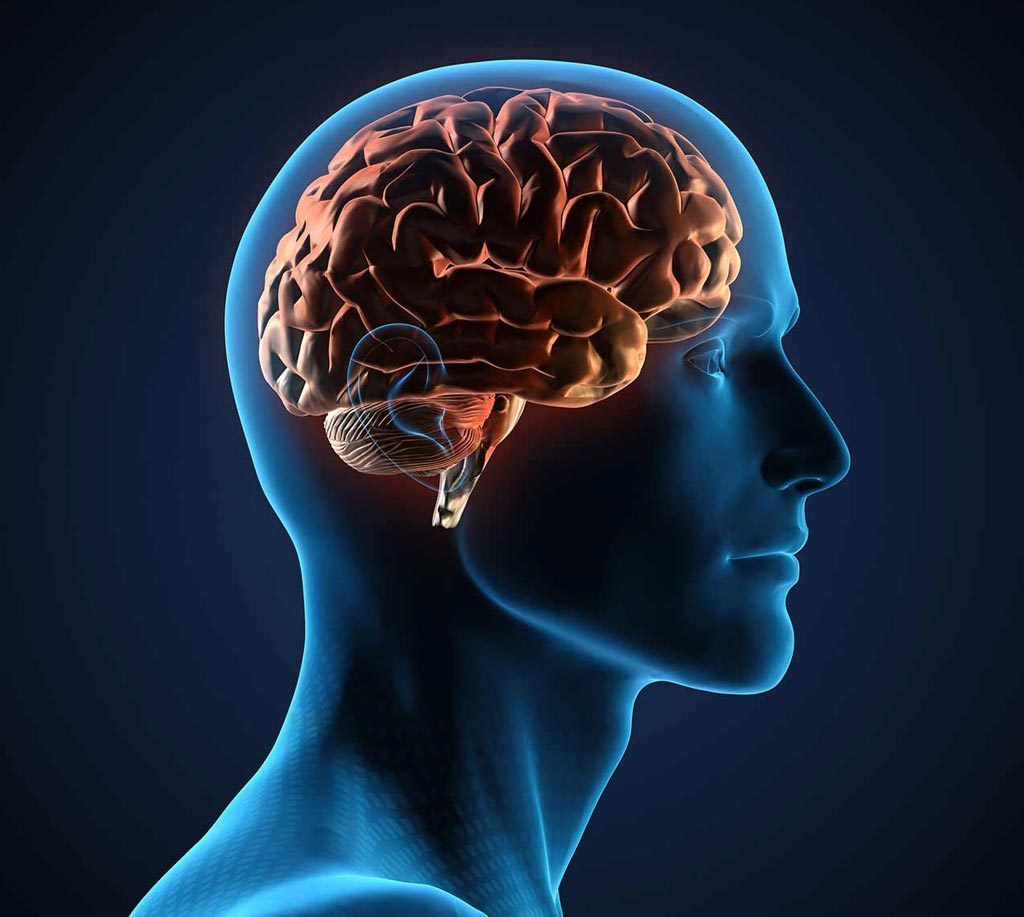 Image: A study carried out by neuroscientists and AI researchers provides insight into the way the human brain connects individual episodic memories to solve problems (Photo courtesy of Shutterstock).