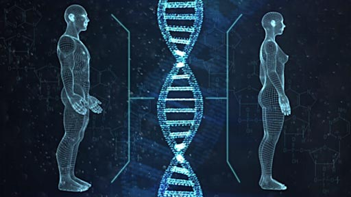 Image: A recent study found that about 6,500 genes are expressed differently in men and women (Photo courtesy of the Weizmann Institute of Science).