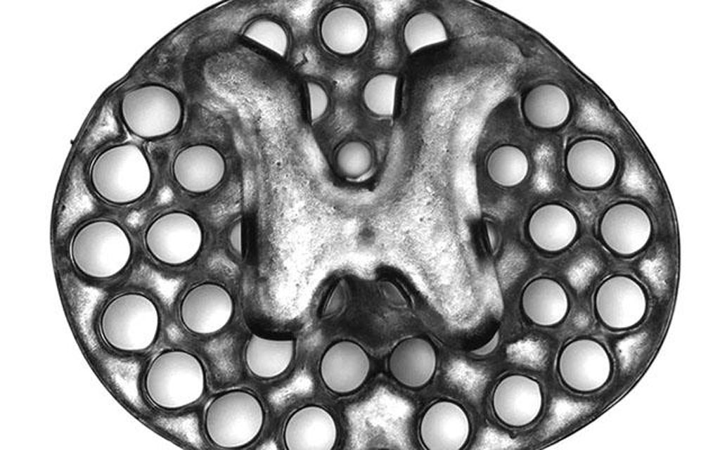 Image: A three-dimensional printed, two-millimeter implant used as scaffolding to repair spinal cord injuries in rats. The circles surrounding the H-shaped core are hollow portals through which implanted neural stem cells can extend axons into host tissues (Photo courtesy of Jacob Koffler and Wei Zhu, University of California, San Diego).
