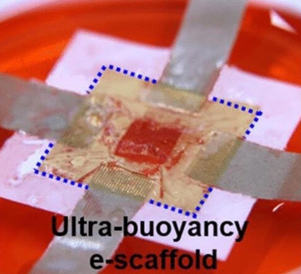 Imagen: Un andamio flotante en 3D que proporciona un seguimiento eficiente de la ingeniería de tejidos (Fotografía cortesía de ACS Nano).