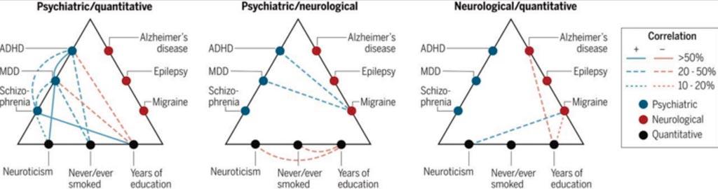 Imagen: Correlaciones de riesgo genético entre los trastornos cerebrales y los fenotipos cuantitativos (Fotografía cortesía del Consorcio Brainstorm).