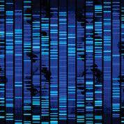 Imagen: La determinación de la carga fundacional de los tumores usando secuenciación de próxima generación dirigida predice un beneficio para los inhibidores del punto de control inmune para el cáncer (Fotografía cortesía del Instituto de Cáncer Rutgers).