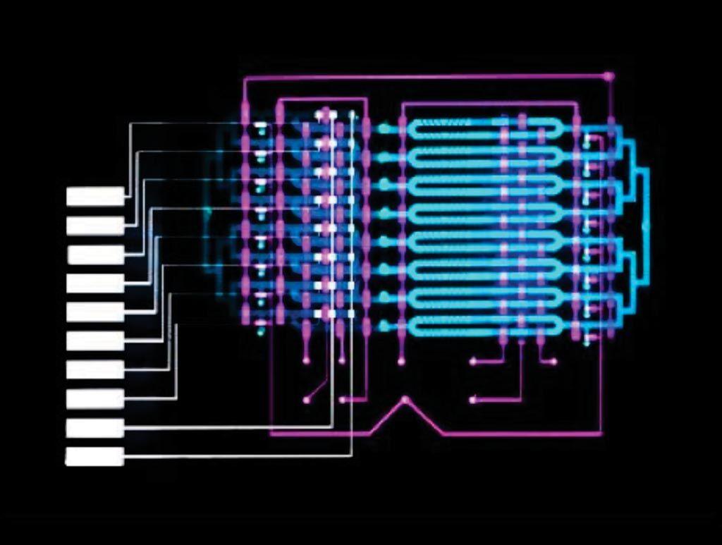 Imagen: Un dispositivo de microfluídica inventado por el MIT podría ayudar a los médicos a diagnosticar la sepsis, una de las principales causas de muerte en los hospitales de los Estados Unidos, detectando automáticamente los niveles elevados de un biomarcador de sepsis en aproximadamente 25 minutos, con menos de una gota de sangre obtenida por punción digital (Fotografía cortesía de Felice Frankel).