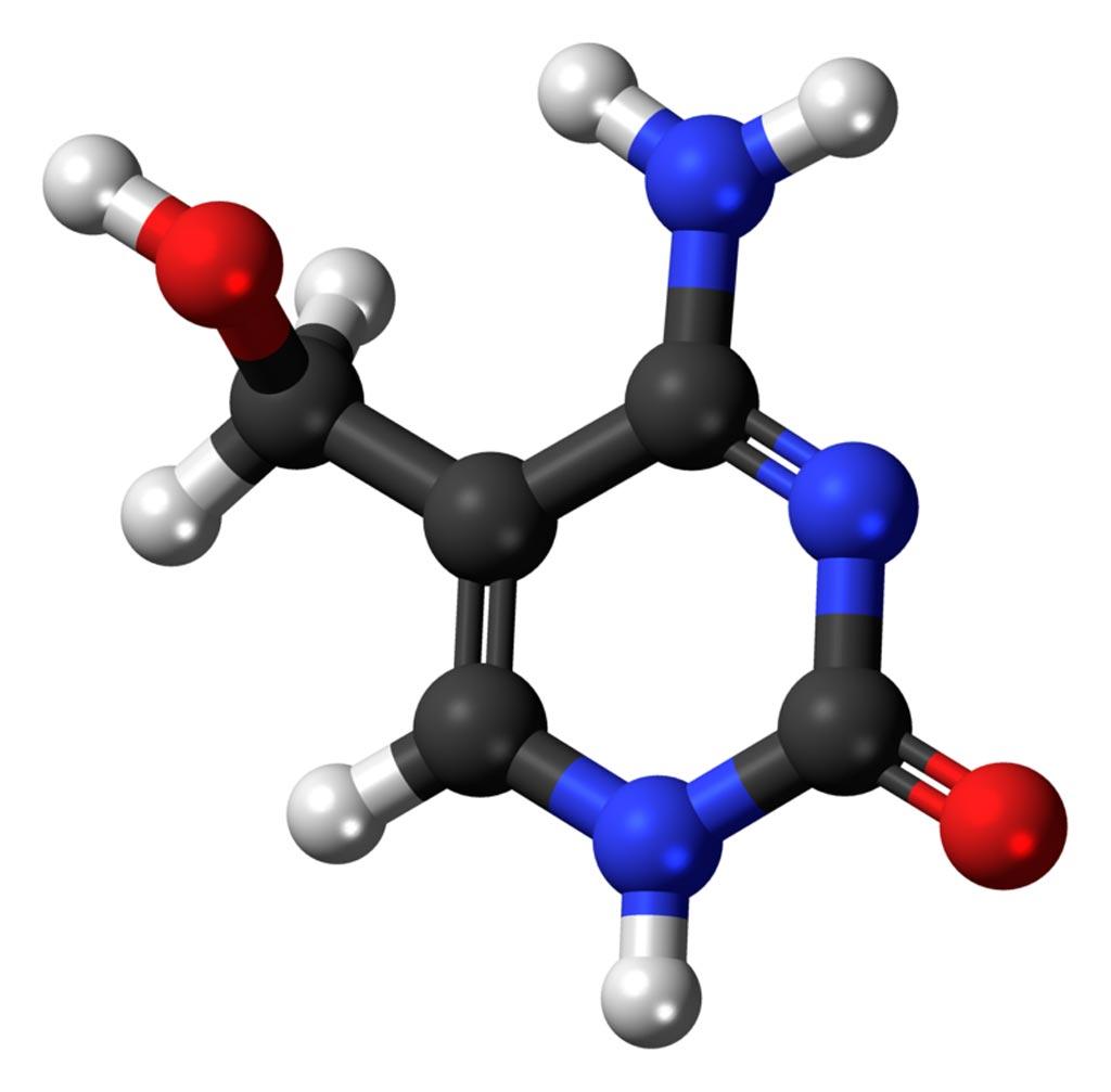 Imagen: Un modelo de bola y palo de la molécula de 5-hidroximetilcitosina (5hmC) (Fotografía cortesía de Wikimedia Commons).