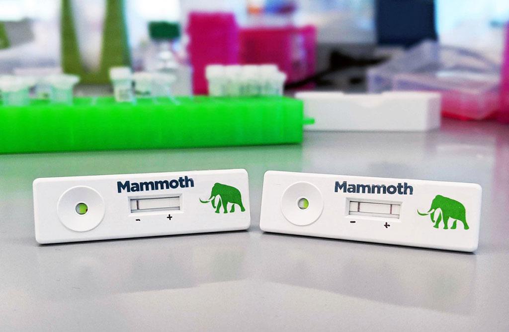 Imagen: Prueba de Covid basada en CRISPR de Mammoth (Foto cortesía de Mammoth Biosciences)