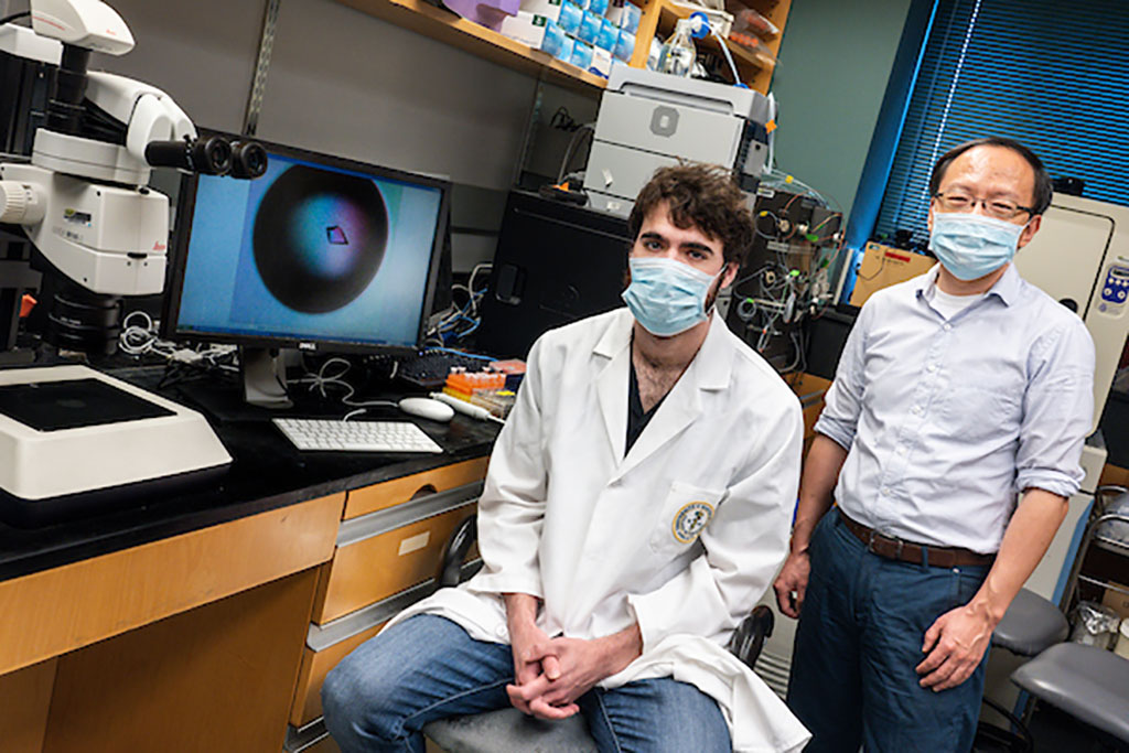 Imagen: El estudiante de doctorado Michael Sacco (sentado) con Yu Chen, PhD, profesor asociado de medicina molecular (Fotografía cortesía de la USF)
