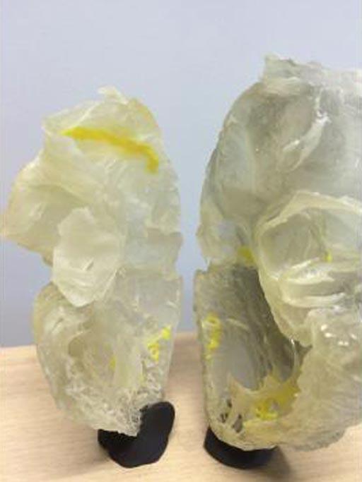 Imagen: Un corazón plástico impreso en 3D destaca el sistema de conducción del corazón humano (Fotografía cortesía de la Universidad de Manchester).