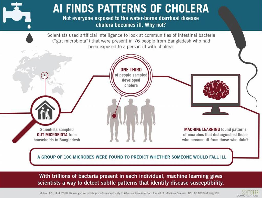 Image: AI detects patterns of gut microbes indicative of cholera risk (Photo courtesy of Duke University).