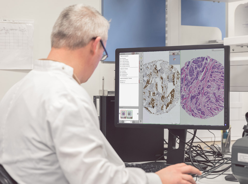Image: The web-based Xplore system will allow for enhanced sharing of pathology and tissue images (Photo courtesy of Philips Healthcare).