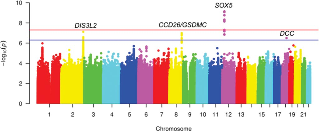 Image: Manhattan plot for meta-analysis (discovery) of GWAS of chronic back pain; Red line depicts genome-wide statistical significance; Blue line depicts suggestive significance (Photo courtesy of University of Washington).