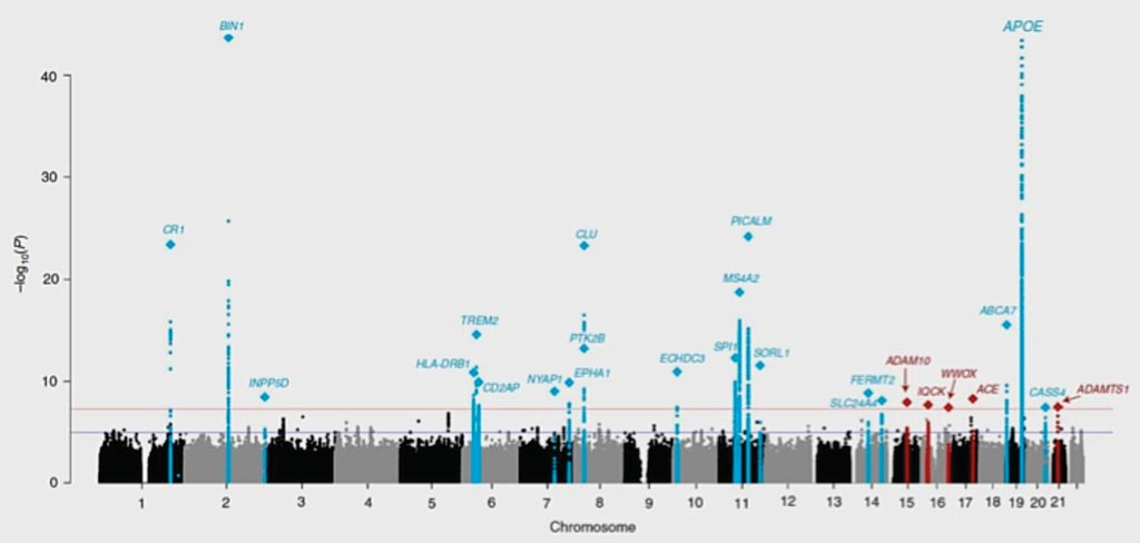 Image: Newly identified (red) and known (blue) genes linked to Alzheimer's disease spike in this table plotting results from genome-wide association analysis of 94,437 individuals with late onset Alzheimer's (Photo courtesy of Brian W. Kunkle, MD, PhD and colleagues).