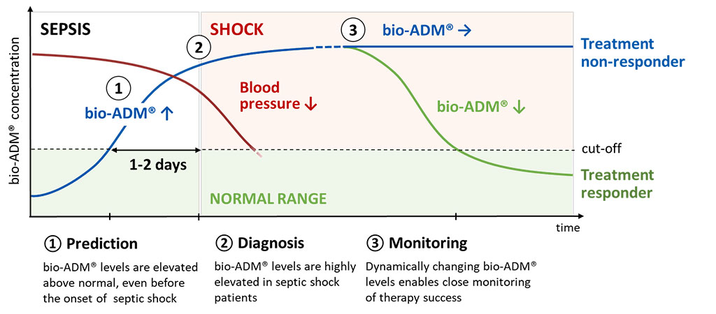 Image: Endothelial function biomarker adrenomedullin as assayed by bio-ADM improves sepsis patients risk stratification (Photo courtesy of sphingotec).