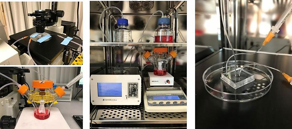 Image: Laboratory set-up of microfluidic sorting and purification of cells during red blood cell culture and manufacturing (Photo courtesy of Singapore-MIT Alliance for Research and Technology).