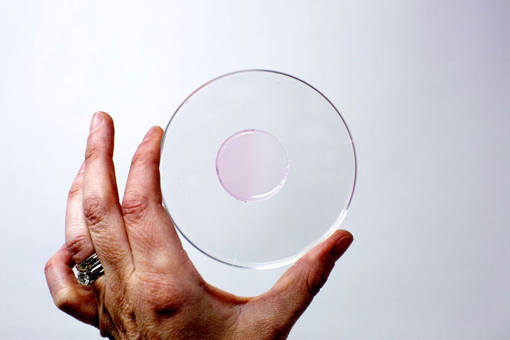 Image: A circle of the hydrogel, irradiated on the left half, whereas the right half is not irradiated (Photo courtesy of ASU)