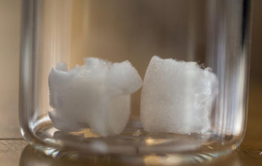 В новом исследовании утверждается, что нанокристаллы, полученные из растительной целлюлозы, могут образовать легкий и прочный аэрогель (фото любезно предоставлено Клэр Кирнан/ UBC).