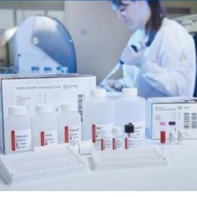 Иммунохроматографический тест