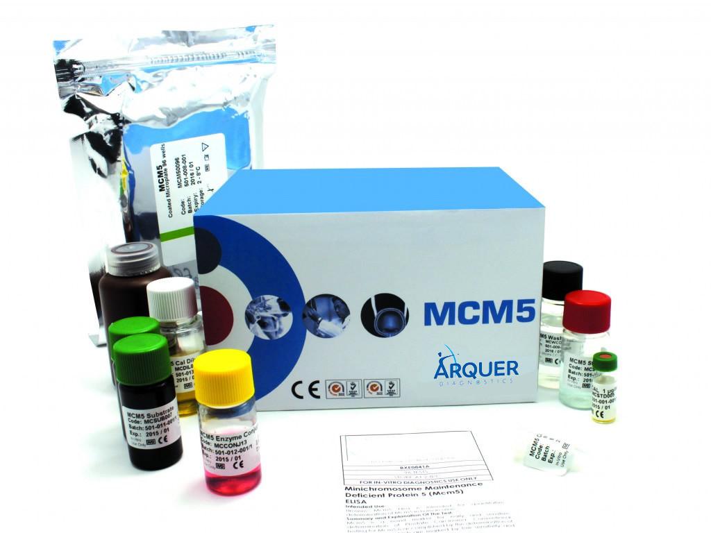 Комплект для проведения твердофазного иммуноферментного анализа (ELISA) для обнаружения белка minichromosome maintenance complex component 5 (Mcm5). Фото любезно предоставлено Arquer Diagnostics Ltd.