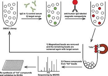 Скрининг с использованием магнитных микрогранул для определения биомаркеров крови при выявлении расстройств аутистического спектра (фото любезно предоставлено Юго-Западным медицинским центром Техасского университета).