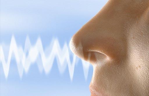 Проблемы с восприятием запахов могут увеличить для людей риск связанных со здоровьем состояний, а также могут быть признаком нейродегенеративного заболевания (фото любезно предоставлено Getty Images).