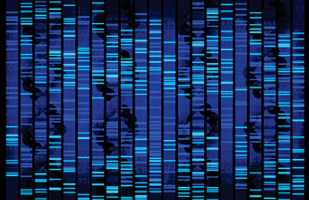 Мутационная нагрузка опухоли, определенная целенаправленным секвенированием нового поколения, предсказывает эффективность ингибиторов контрольных точек иммунного ответа для лечения рака (фото любезно предоставлено Онкологическим институтом Рутгерса).