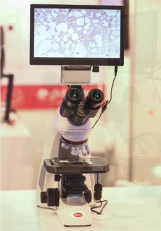 Эксперты из региона БВСА встретились на конгрессе MEDLAB, чтобы обсудить широкий круг тем, таких как барьеры на пути к обеспечению точной медицины в арабском мире, стратегии профилактики генетических заболеваний и секвенирование следующего поколения в онкологии (фото любезно предоставлено MENA Herald).