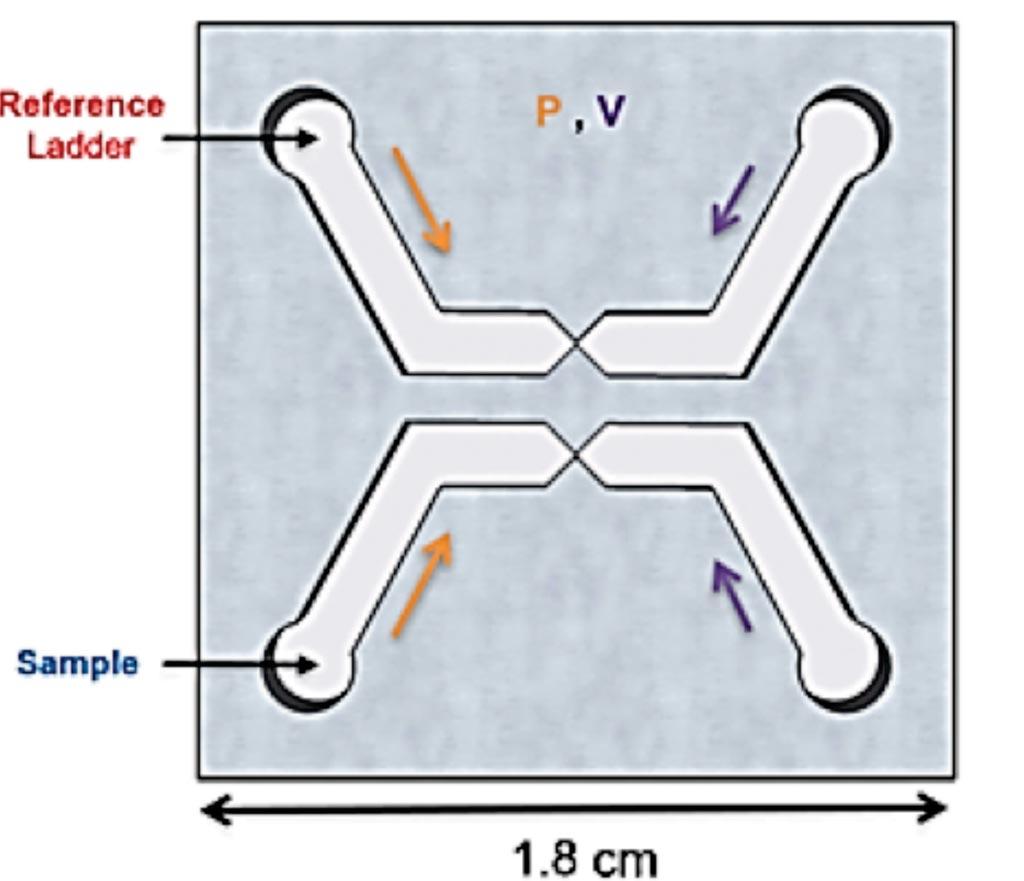 Схематическое изображение чипа µLAS с двумя независимыми каналами, приводимыми в действие одинаковым давлением и напряжением. Каждый канал содержит область воронки, которая функционирует для разделения и концентрации ДНК (фото любезно предоставлено Университетом Лозанны).